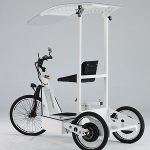 Electric Tricycles SB-100